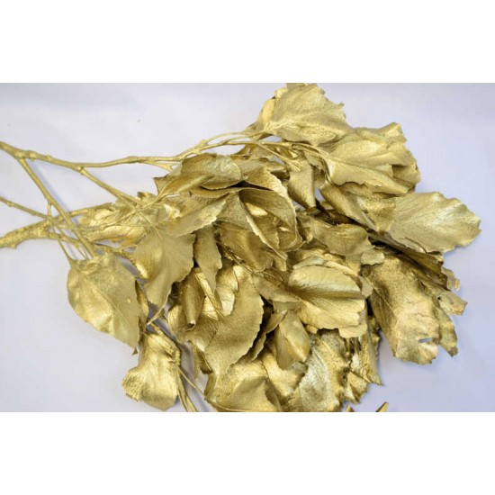 Carne Leaves - Gold Painted