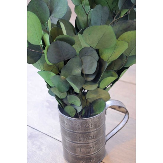 Preserved Populus Eucalyptus Bunch - Green