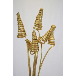 Dried Cane Cones - Gold Painted