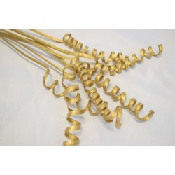 Dried Cane Springs - Gold Painted