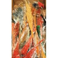 Dried Mixed Floral Supply Box (Great Sample Box)