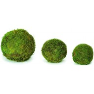 Decorative Moss Balls - 2,6,8 inch diameter