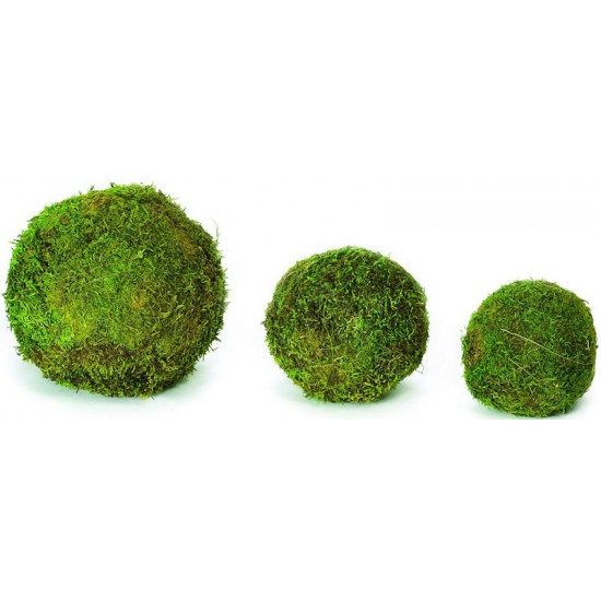 Decorative Moss Balls - 2,6,8 inch diameter