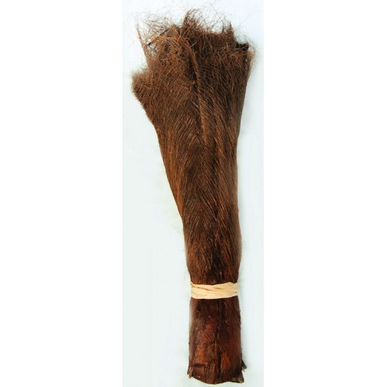 Dried Palm Fiber Sale - Coconut Palm