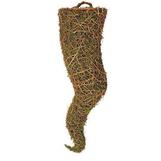 Large Moss Container - 37 inches