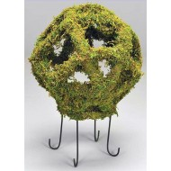 Moss Globe 18
