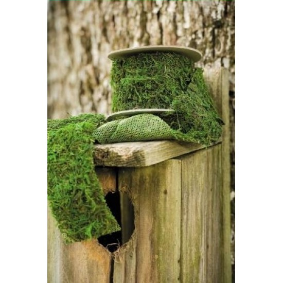 Dried Moss Ribbon - Natural Moss Roll