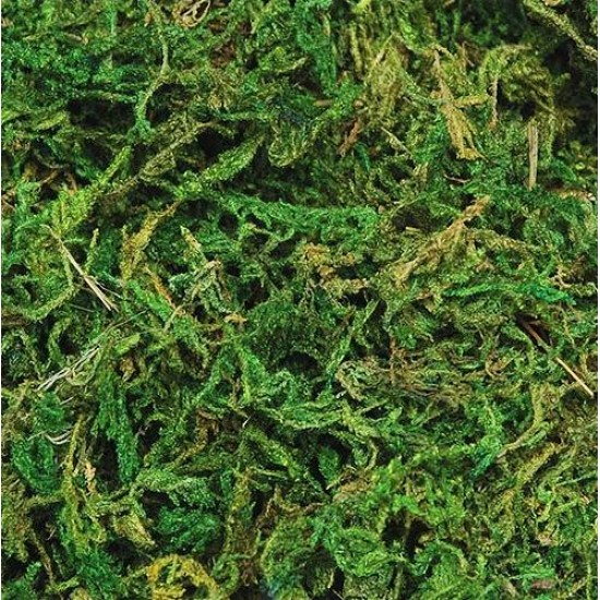 Stone Moss - Decorative Stone Moss