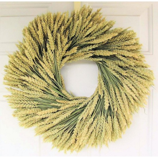 Beardless Wheat Wreath - 19 inch