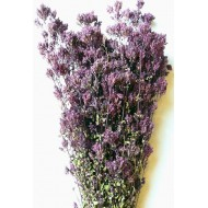 Dried Oregano Flowers Bunch - Santa Cruz