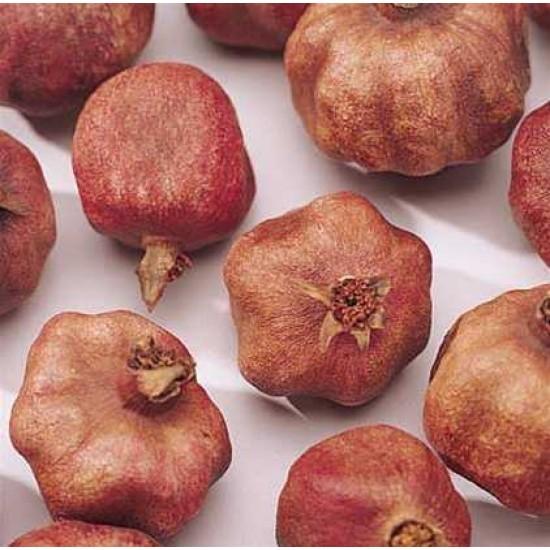 Dried Pomegranates (Enhanced)