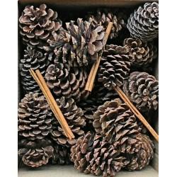 Pine Cones with Cinnamon Sticks