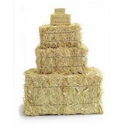 Mini Straw Bales - 2.5 inch (2 per bag)