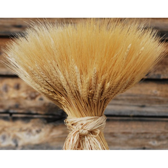 Extra Large Wheat Sheaves