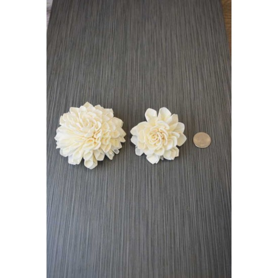Sola Wood Dahlia Flowers