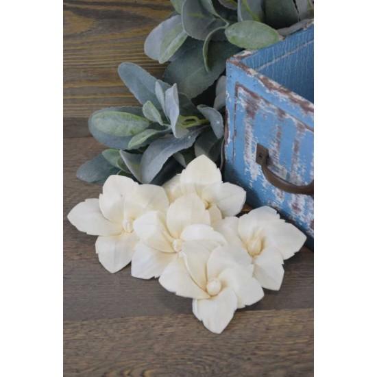Wood Daylily Flowers - Daylilies