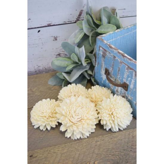 Wood Zinnia Flowers