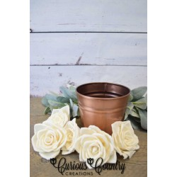 Bombay Wood Rose