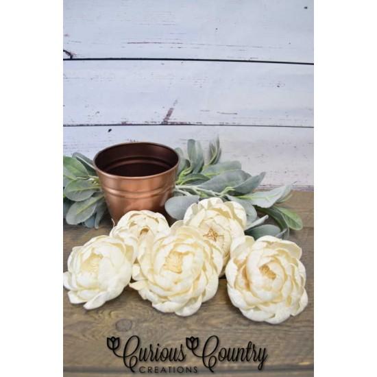 Wood Peony Flowers - Peonies BH