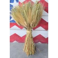 Mixed Grain Wheat Bundle