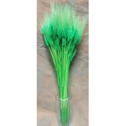 Green Wheat Bundle - Dyed