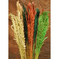 Dried Wild Oats - Decorative