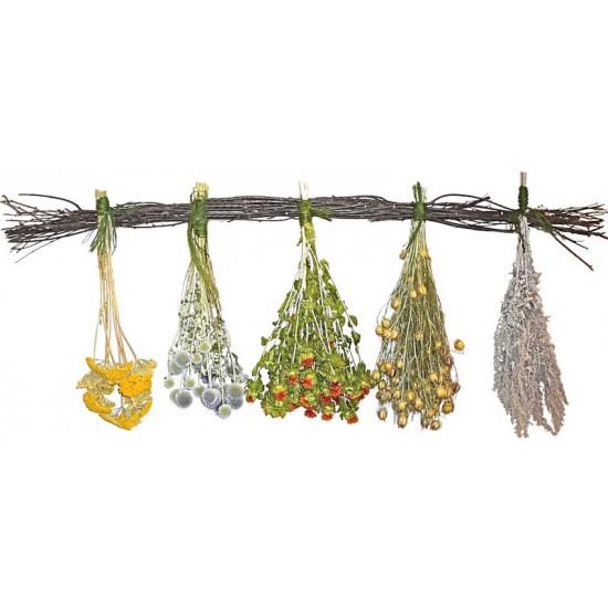Garden Herb Decorative Swag