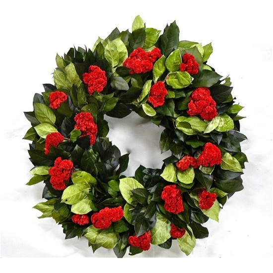 Dried Celosia Flower Wreath
