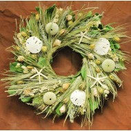 Dried Sand Dollar Seashell Beach Wreath
