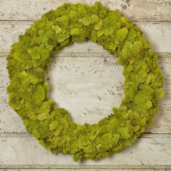 Dried Reindeer Moss Wreath - Green